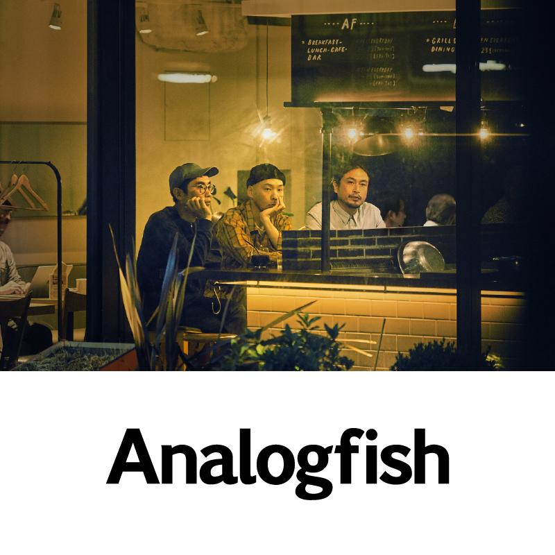 出演アーティスト情報【Analogfish】
